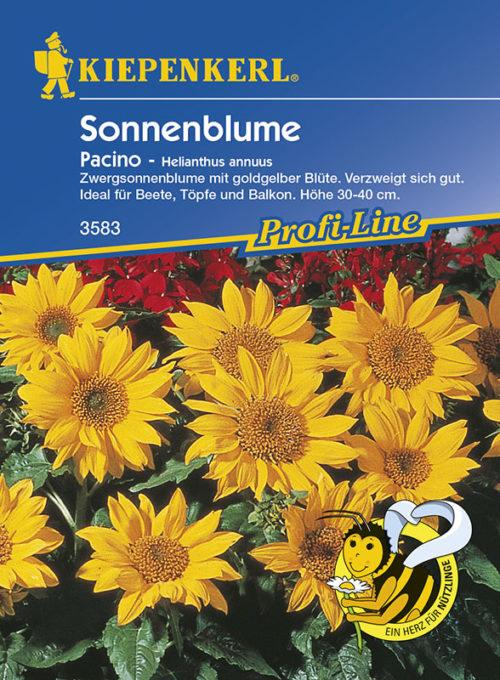 Vrtnarstvo Breskvar - Helianthus annuus Pacino