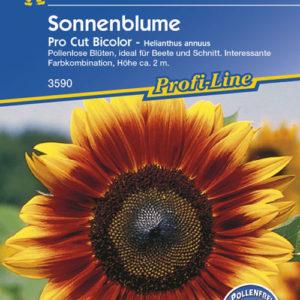 Vrtnarstvo Breskvar - Helianthus annuus Pro Cut Bicolor F1
