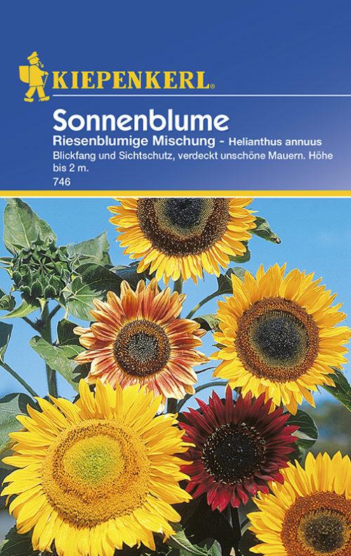 Vrtnarstvo Breskvar - Helianthus annuus Riesenblumige Mix