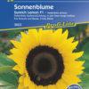 Vrtnarstvo Breskvar - Helianthus annuus Sunrich Lemon F1