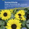 Vrtnarstvo Breskvar - Helianthus annuus Suntastic