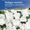 Vrtnarstvo Breskvar - Impatiens walleriana Accent Weiss F1