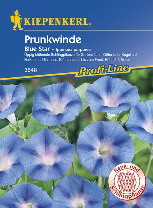 Vrtnarstvo Breskvar - Ipomoea purpurea Blue Star