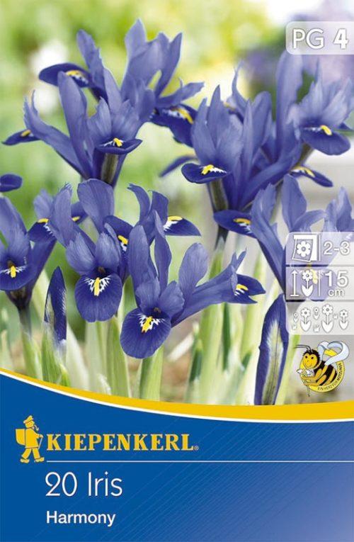 Vrtnarstvo Breskvar - Iris Harmony