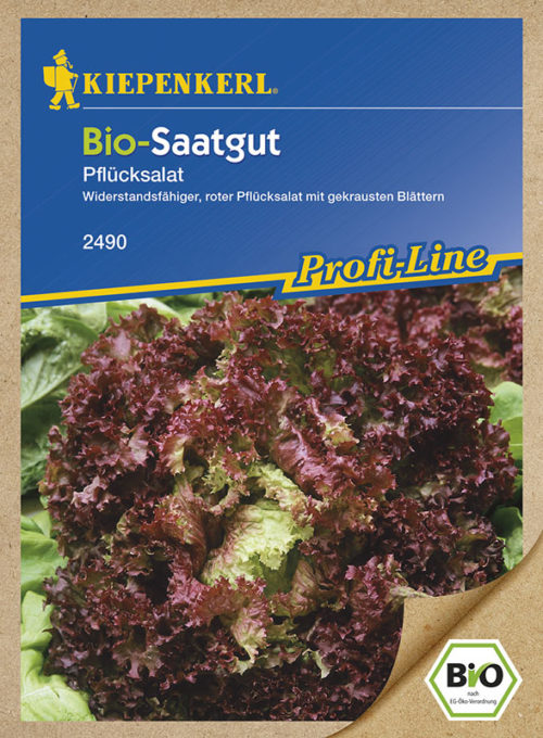 Vrtnarstvo Breskvar - Letuca sativa Rot Bio