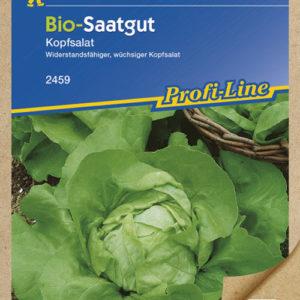 Vrtnarstvo Breskvar - Letuca sativa Bio
