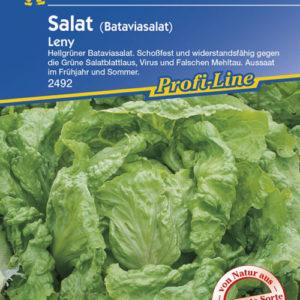 Vrtnarstvo Breskvar - Lactuca sativa Leny