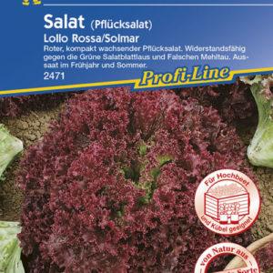 Vrtnarstvo Breskvar - Lactuca sativa Lollo rosa Solmar