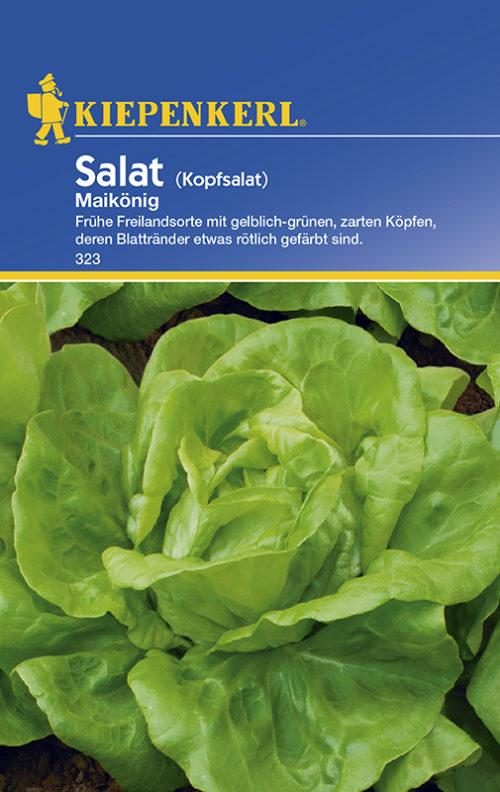 Vrtnarstvo Breskvar - Lactuca sativa Maikönig
