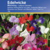 Vrtnarstvo Breskvar - Lathyrus odoratus Mix