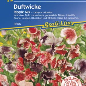 Vrtnarstvo Breskvar - Lathyrus odoratus Ripple Mix