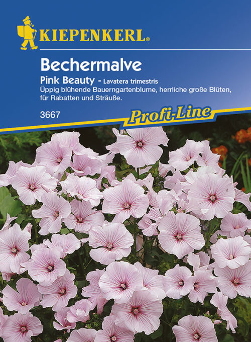 Vrtnarstvo Breskvar - Lavatera trimestris Pink Beauty