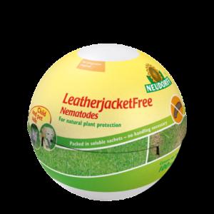 Vrtnarstvo Breskvar - Neudorff LeatherjacketFree – Nematodes