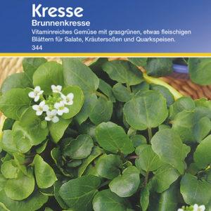 Vrtnarstvo Breskvar - Lepidum sativum Brunnenkresse