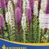 Vrtnarstvo Breskvar - Liatris Mix