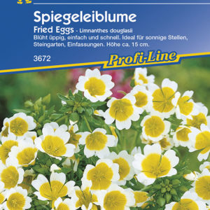 Vrtnarstvo Breskvar - Limnanthes douglasii Fried Eggs