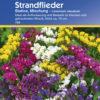 Vrtnarstvo Breskvar - Limonium Sinatum Statice Mix