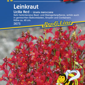 Vrtnarstvo Breskvar - Linaria Maroccana Licilia Red