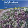 Vrtnarstvo Breskvar - Lobularia maritima Easter Basket