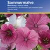 Vrtnarstvo Breskvar - Malope trifida Mix