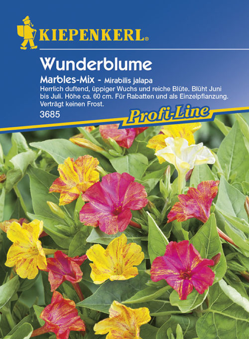 Vrtnarstvo Breskvar - Mirabilis jalapa Marbles Mix