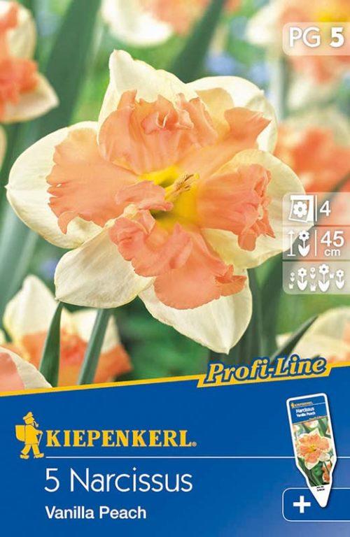 Vrtnarstvo Breskvar - Narcissus Vanilla Peach