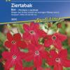 Vrtnarstvo Breskvar - Nicotiana sanderae Red