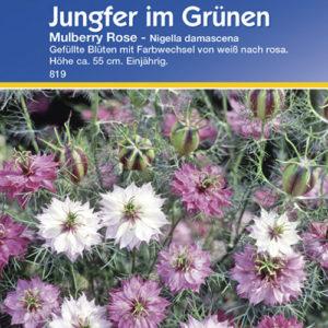 Vrtnarstvo Breskvar - Nigella damascena Mulberry Rose