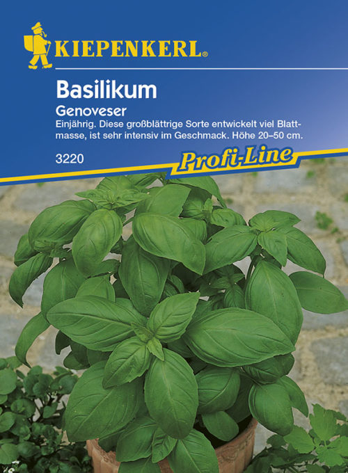 Vrtnarstvo Breskvar - Ocimum basilicum Genoveser