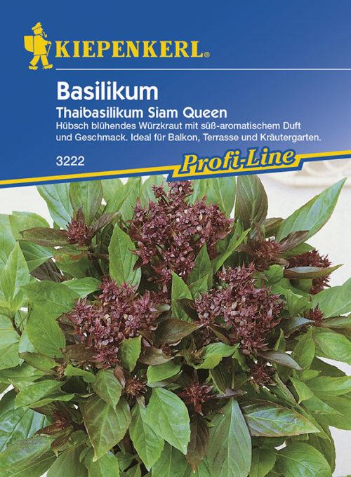 Vrtnarstvo Breskvar - Ocimum basilicum Siam Queen