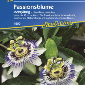Vrtnarstvo Breskvar - Passiflora caerulea