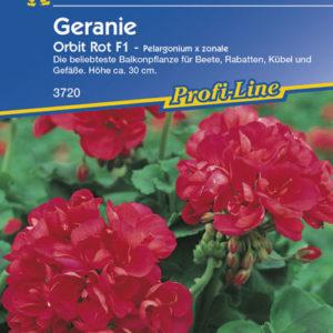 Vrtnarstvo Breskvar - Pelargonium zonale Orbit Rot F1
