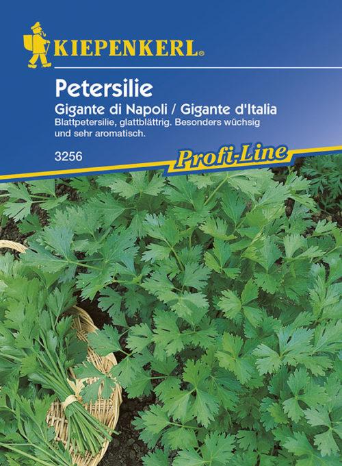 Vrtnarstvo Breskvar - Petroselinum crispum Gigante di Napoli