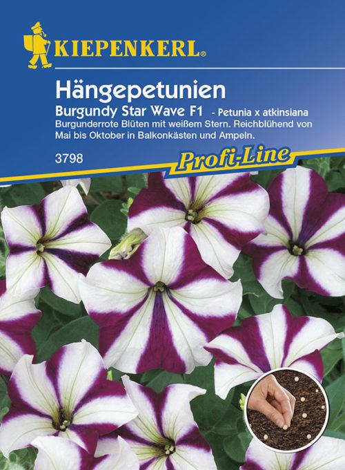 Vrtnarstvo Breskvar - Petunia atkinsiana Burgundy Star Wave F1