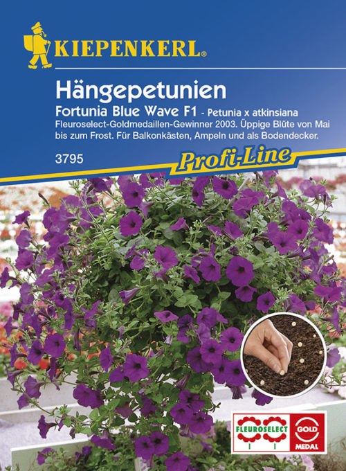Vrtnarstvo Breskvar - Petunia atkinsiana Fortunia Wave Blue