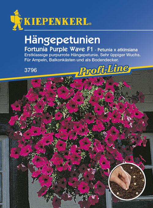 Vrtnarstvo Breskvar - Petunia atkinsiana Fortunia Wave Purple