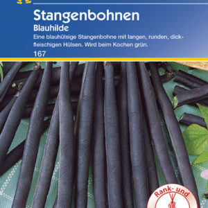 Vrtnarstvo Breskvar - Phaseolus vulgaris Blauhilde