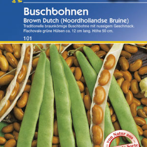 Vrtnarstvo Breskvar - Phaseolus vulgaris Brown Dutch