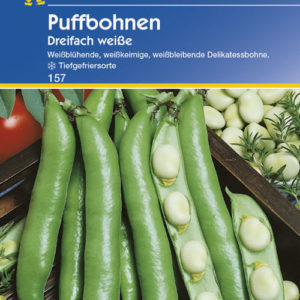 Vrtnarstvo Breskvar - Phaseolus vulgaris Dreifach Weisse