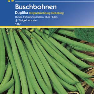Vrtnarstvo Breskvar - Phaseolus vulgaris Duplika