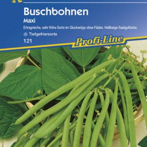 Vrtnarstvo Breskvar - Phaseolus vulgaris Maxi