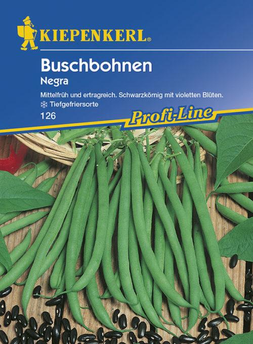 Vrtnarstvo Breskvar - Phaseolus vulgaris Negra