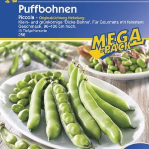 Vrtnarstvo Breskvar - Phaseolus vulgaris Piccola mega pack
