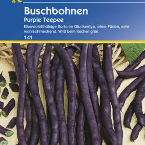 Vrtnarstvo Breskvar - Phaseolus vulgaris Purple Teepee