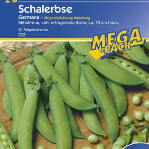 Vrtnarstvo Breskvar - Pisum sativum Germana Mega Pack