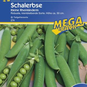 Vrtnarstvo Breskvar - Pisum Sativum Kleine Rheinländerin Mega Pack