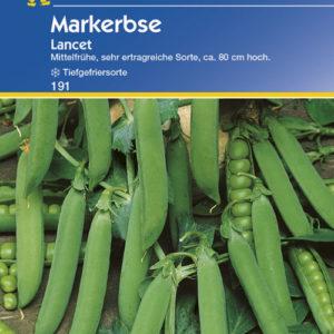 Vrtnarstvo Breskvar - Pisum sativum Lancet