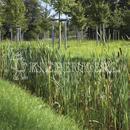 Vrtnarstvo Breskvar - Biotop - RSM 811 - Biotope Areas