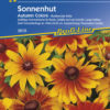 Vrtnarstvo Breskvar - Rudbeckia hirta Autumn Colours
