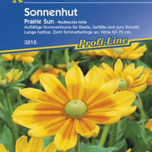 Vrtnarstvo Breskvar - Rudbeckia hirta Prairie Sun